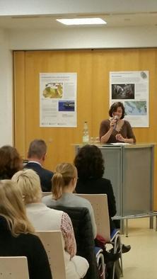 DGB Kreisverband Main-Spessart zeigt die Ausstellung Asyl ist Menschenrecht im Klinikum Main-Spessart.