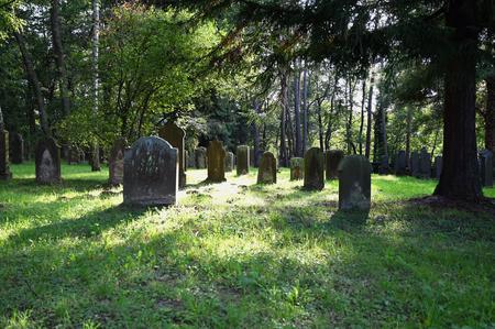 Im Rahmen des Antikriegstag hat der DGB Kreisverband Aschaffenburg-Miltenberg eine Wanderung in Kooperation mit dem Führungsnetz zum jüdischen Friedhof in Schweinheim organisiert.